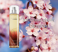 Fragrance Mist - Japanese Cherry Blossom /236ml