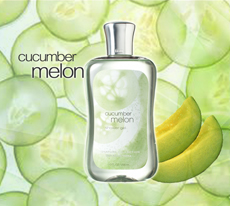Shower Gel - Cucumber Melon /295ml